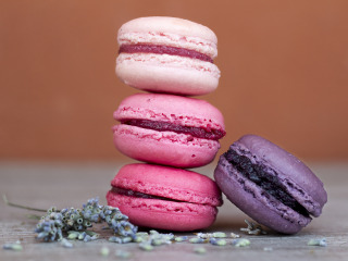 Macarons – Direcly from Paris